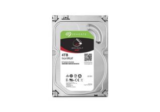 """HDD 3,5"""" SATA 3 4 TB Seagate ST4000VN008"""