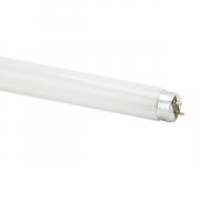 Vito Fluorescentna cev T8 FTC / 18 W/ G13/ 6K