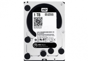 WESTERN DIGITAL Hard disk WD1003FZEX