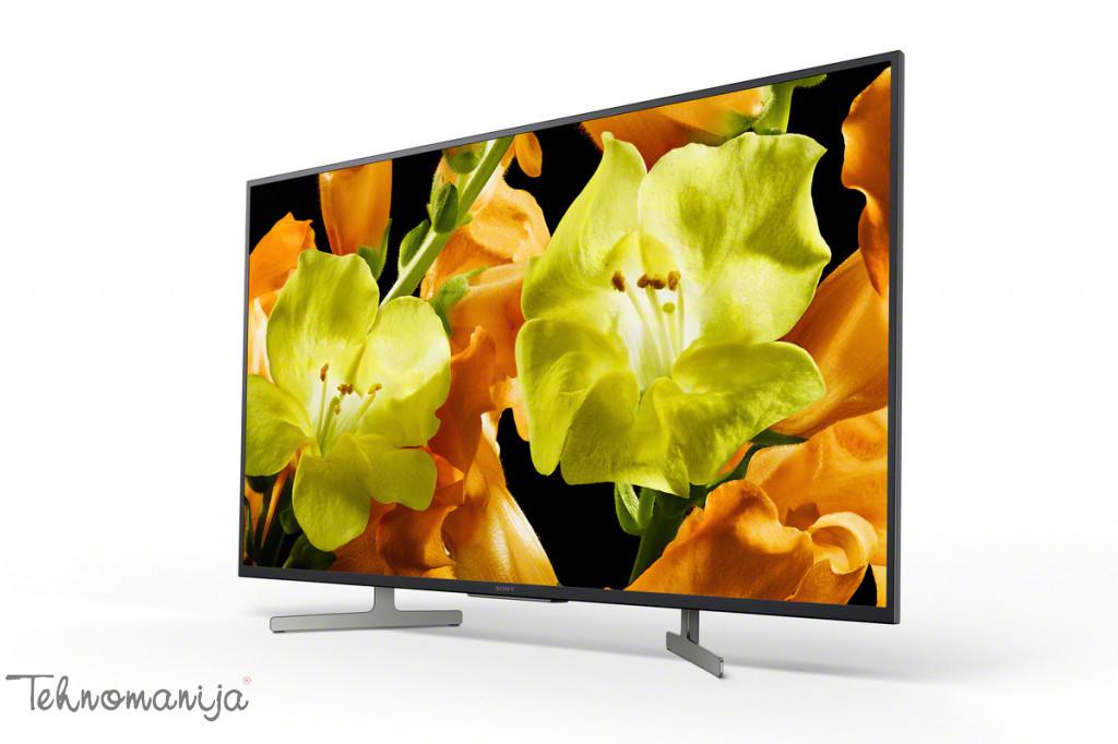 Sony Smart televizor KD49XG8196BAEP